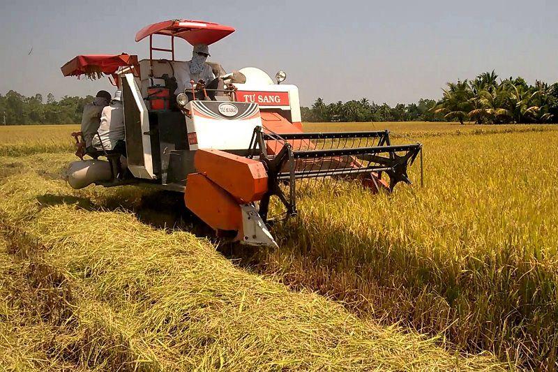 Giá máy gặt đập liên hợp lớn & mini. Máy gặt đập liên hợp giá bao nhiêu?